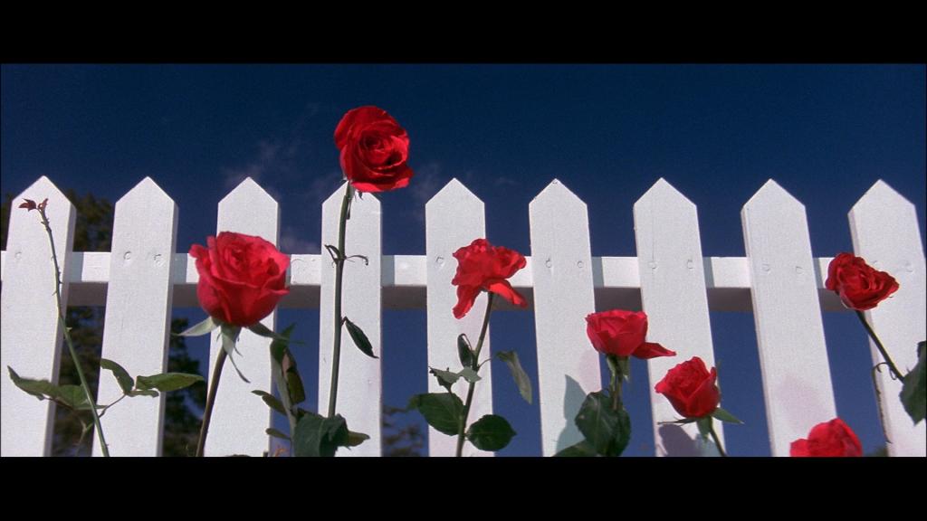 Fotograma inicial de la película