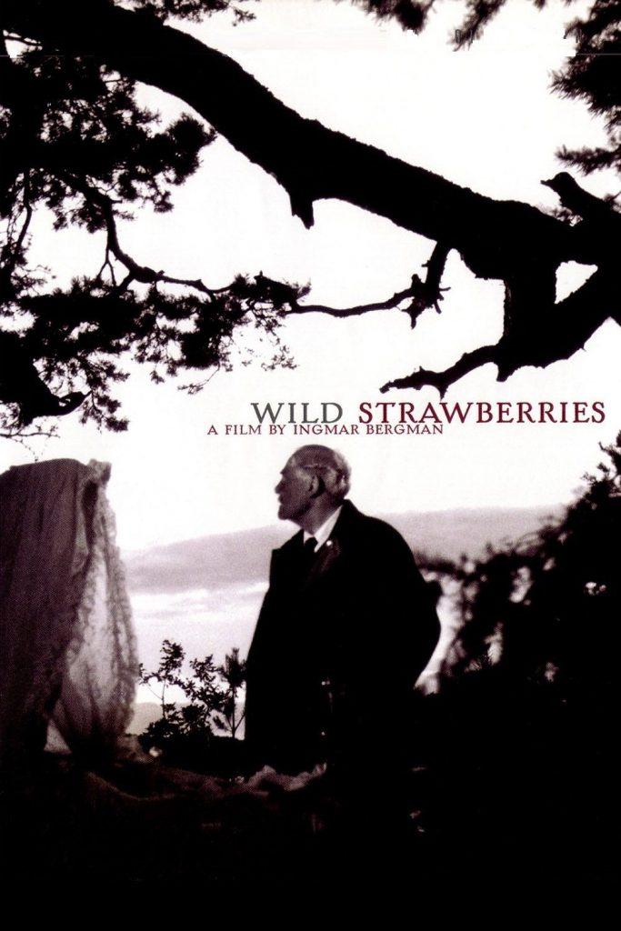 Wild Strawberries, Bergman