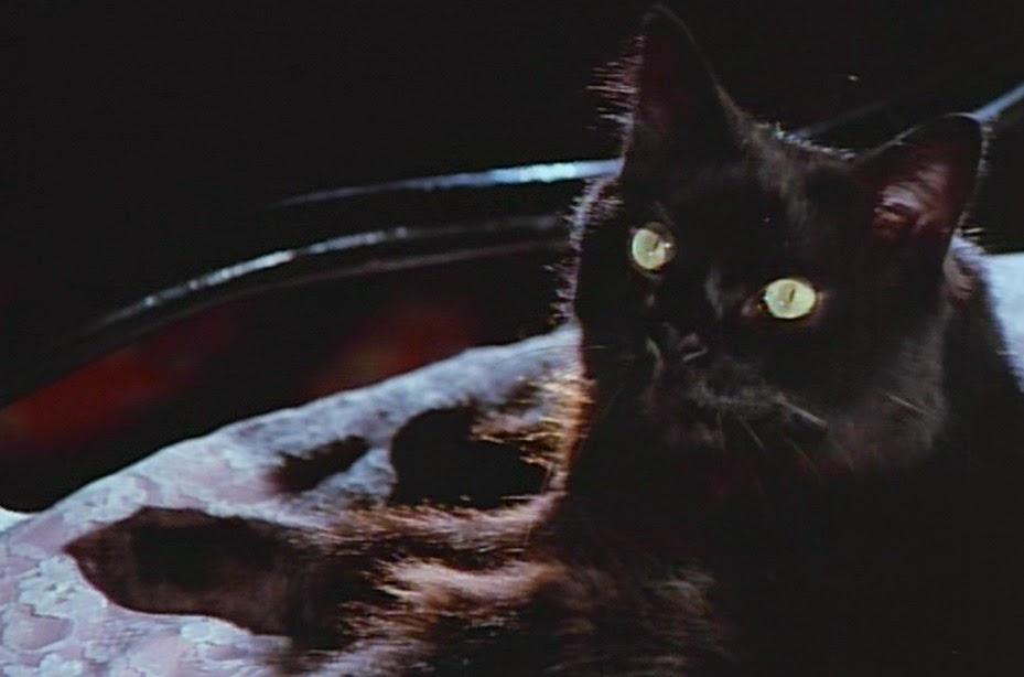 Más negro que la noche. Fuente: A movie colelction.com