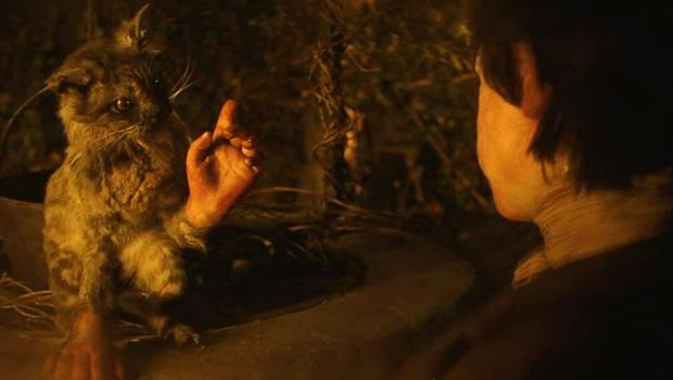 El gato con manos. Fuente: Cortosdemetraje