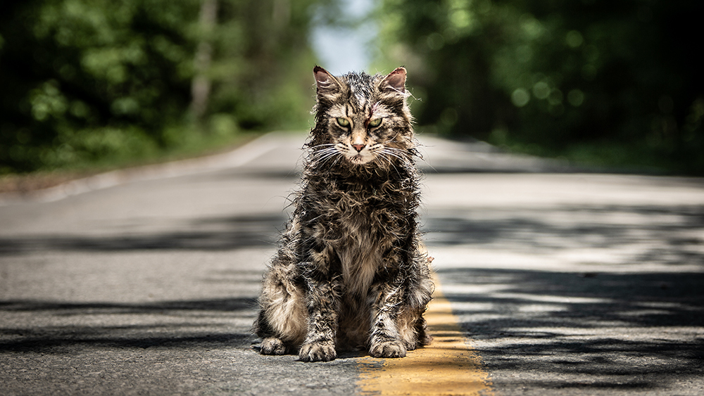 Pet Sematary. Fuente: Variety